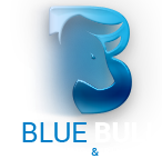 Blue Bull Broker – Small Minimum Deposit & 30$ No Deposit Bonus!