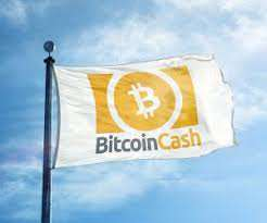 BitcoinCash Review (BCH) – The Best Money in the World