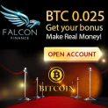 Falcon Finance Broker – Binary Options No Deposit Bonus! USA Customers Welcome & Low Minimum Deposit!